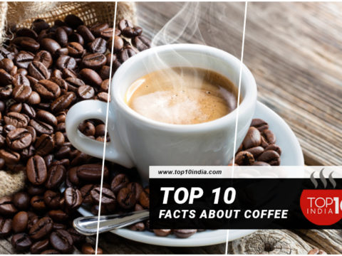 Top 10 Facts about Coffee