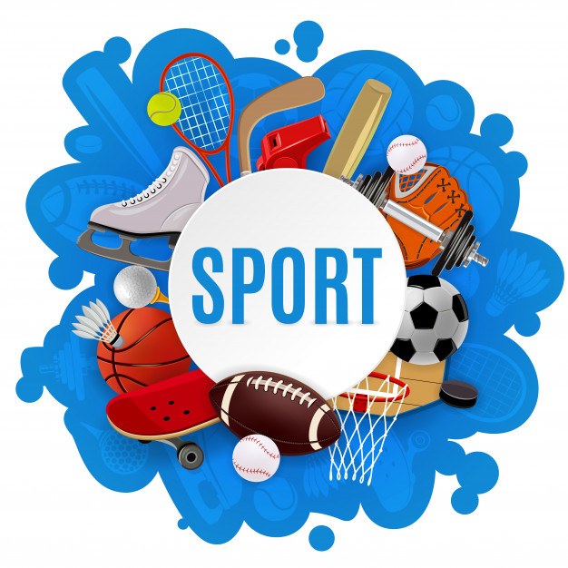 Top 10 India Sports