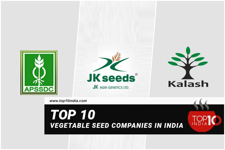 Top 10 Vegetable Seed Companies in India