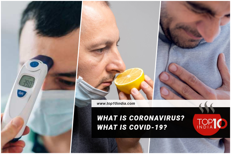 What is Coronavirus? What is Covid-19?