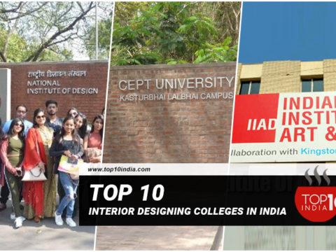Top 10 Interior Designing Colleges In India