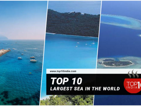 Top 10 Largest Sea in the World